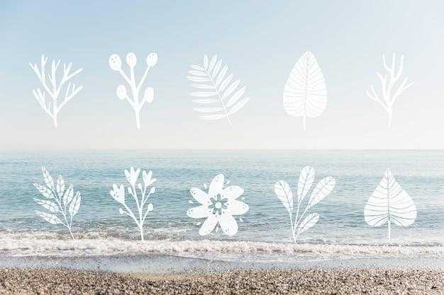 葉のデザインと海辺の風景のコレクション 無料ベクター