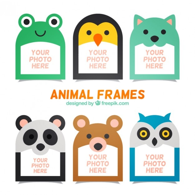 Collection of nice animal photo frame Vector | Free Download