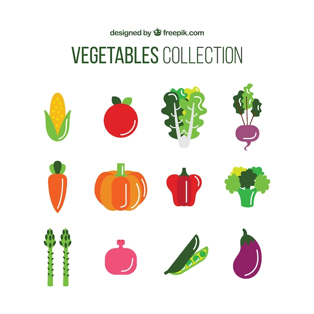 Collection of nutritious vegetable Vector | Free Download