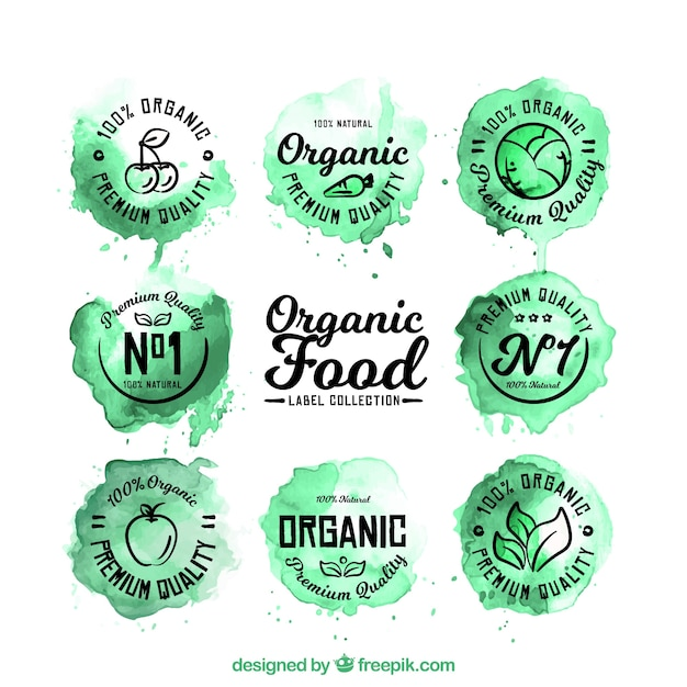 Collection of organic food labels in watercolor\ style
