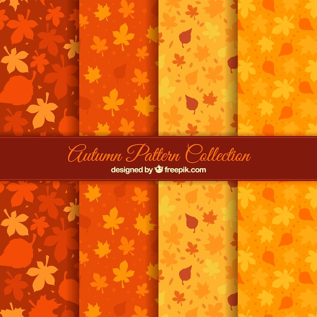 Collection of patterns with autumn leaves