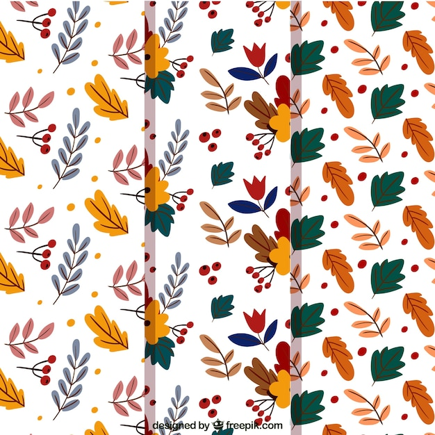 Collection of pretty patterns of hand drawn leaves
