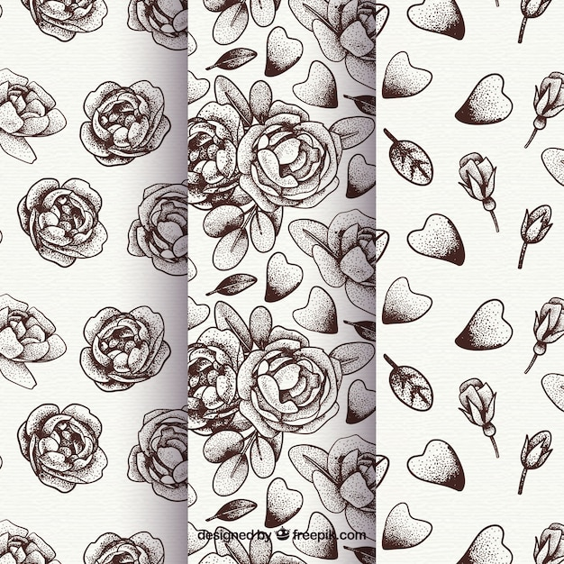 Collection of roses and hand drawn flowers\ patterns