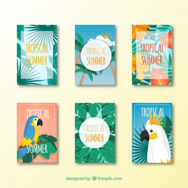 Collection of summer tropical card