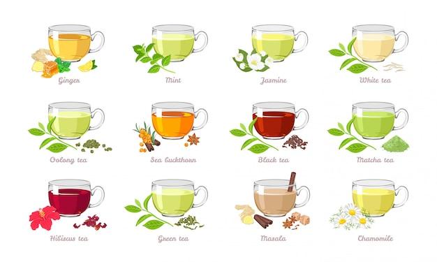 Сбор чая разных видов. Premium векторы