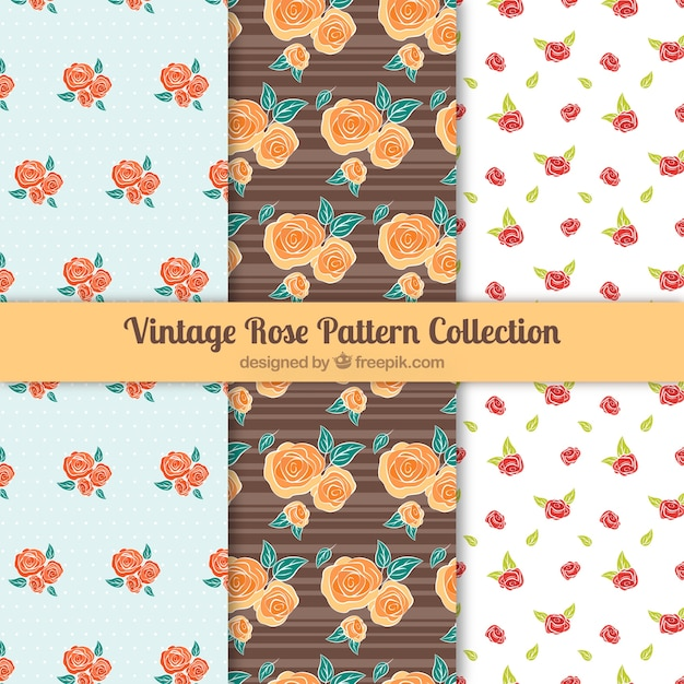 Collection of three patterns with colored roses Free Vector
