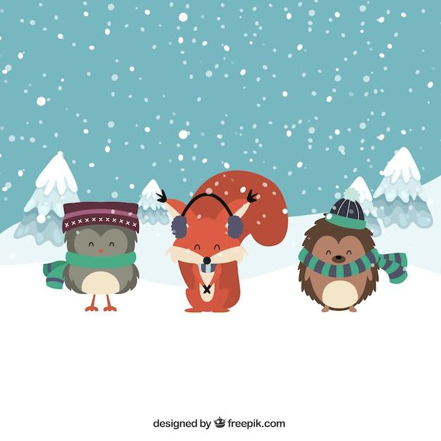 Collection of three winter animals
