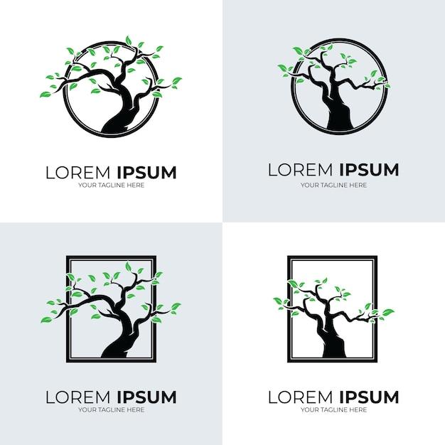 Коллекция шаблонов логотипа дерева Premium векторы