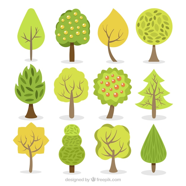 Collection of trees in flat design Free Vector