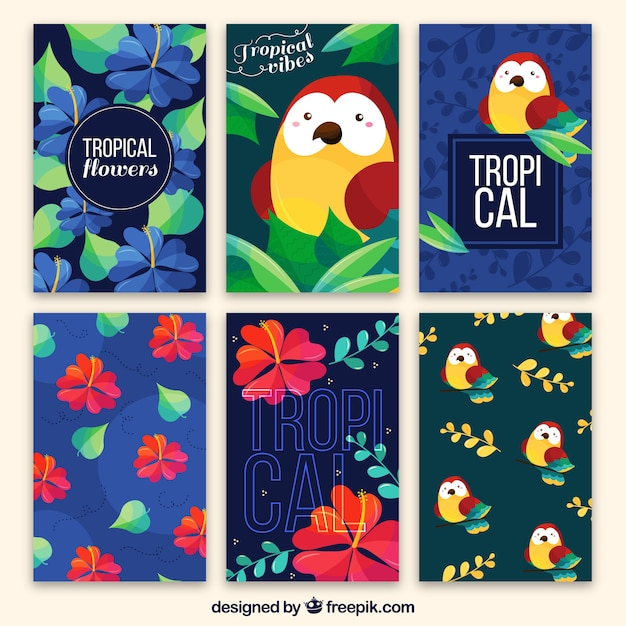 Collection of tropical cards with owl and\ flowers