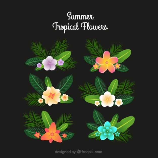 Collection of tropical flower with palm\ leaves