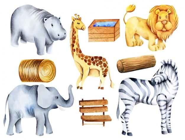 Коллекция акварельных животных, элементы и атрибуты зоопарка, ручная роспись Premium векторы