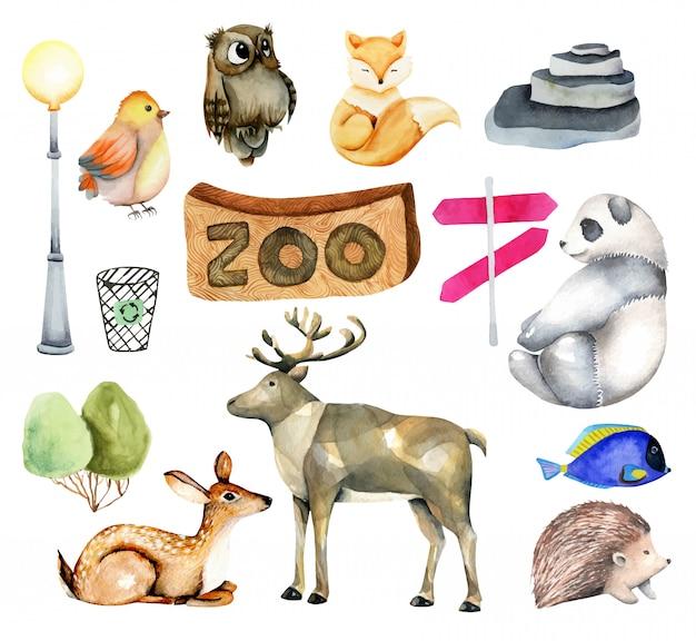 Коллекция акварельных животных с элементами и атрибутами зоопарка Premium векторы