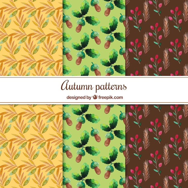 Collection of watercolor autumnal pattern