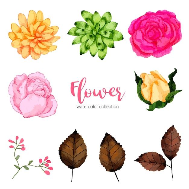 水彩イラスト美しい花のコレクション 無料ベクター