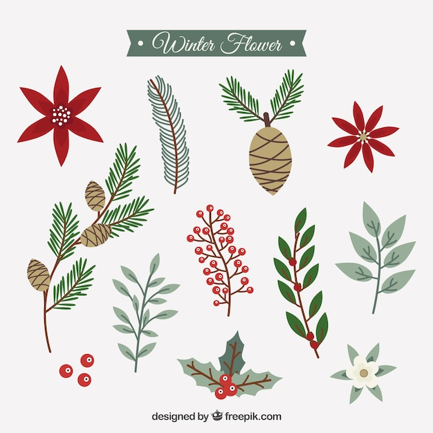 Collection of winter flowers in vintage\ style