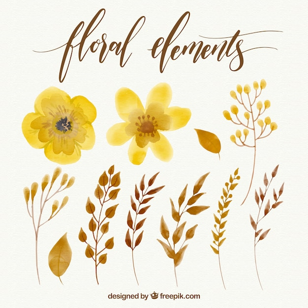 Collection of yellow watercolor flowers