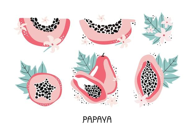 Коллекция розовой папайи с листьями и цветами в векторе. установите рисованной целые и нарезанные фрукты тропических фруктов с мясом, семена. каракули джунгли фрукты. современный дизайн для плакатов, наклеек, меню. Premium векторы