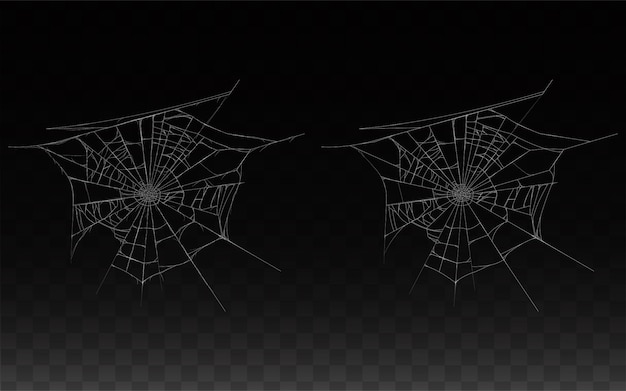 Collection of realistic cobweb, spider web isolated on dark background. Free Vector