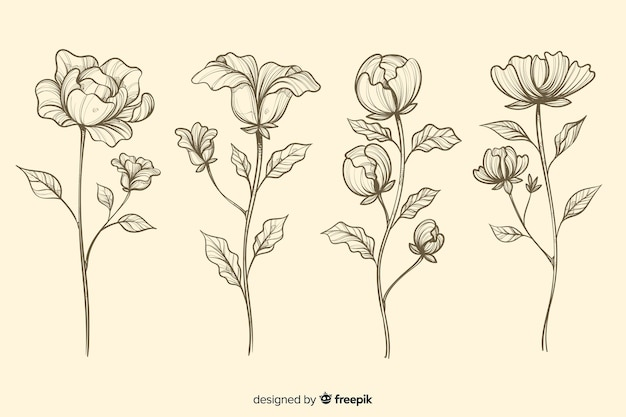 Collection of realistic hand drawn botanical flowers Free Vector