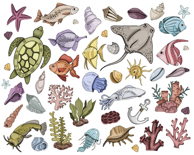 Collection of sea fish Premium Vector