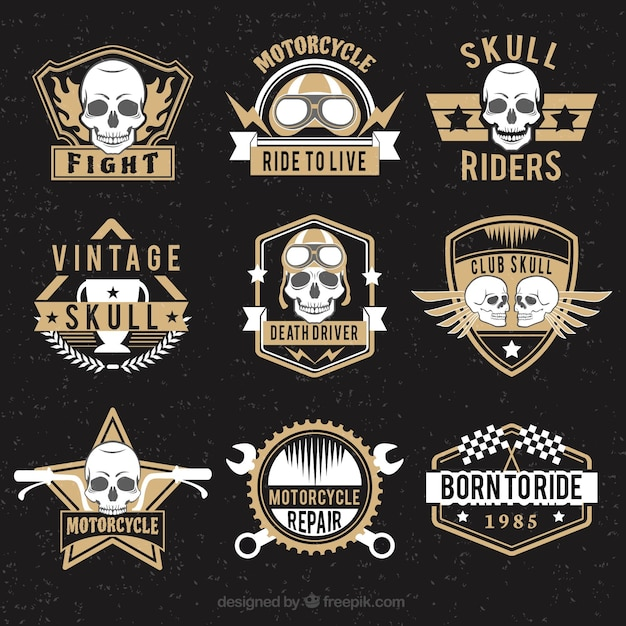 Collection of skull logos with brown details Free Vector