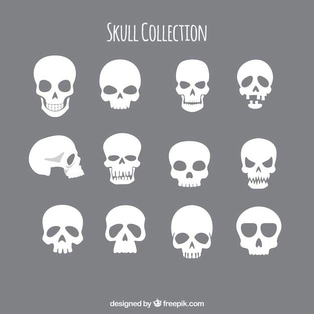 Collection of skulls Free Vector