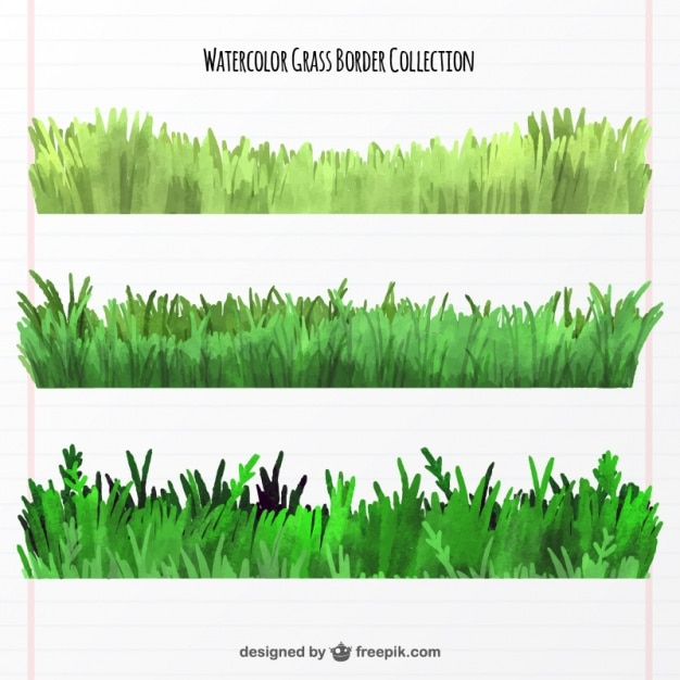Collection of three watercolor grass borders Free Vector