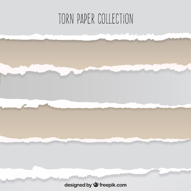Collection of torn paper Free Vector