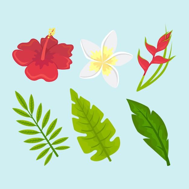 Raccolta del concetto tropicale della foglia e del fiore Vettore gratuito