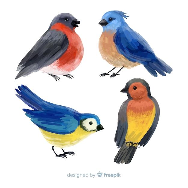 Collection of watercolor autumn birds Free Vector