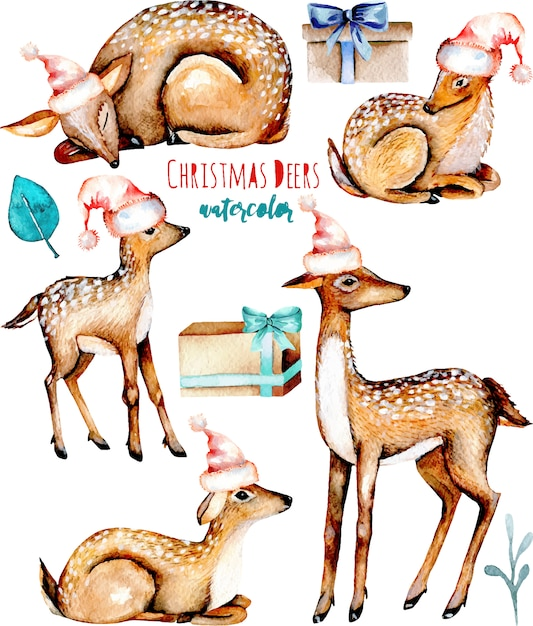 Collection of watercolor christmas deers Premium Vector