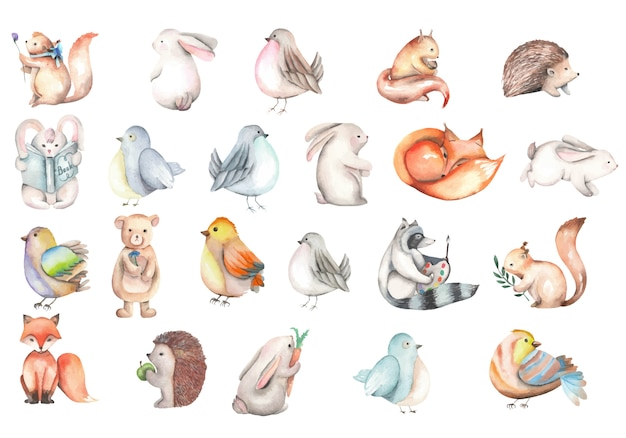 Collection of watercolor cute forest animals illustrations Premium Vector