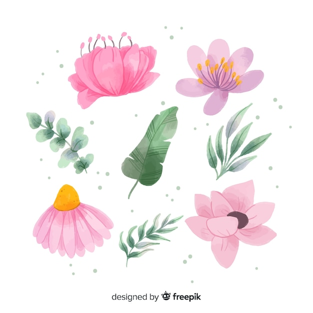Collection of watercolor flowers and leaves Free Vector