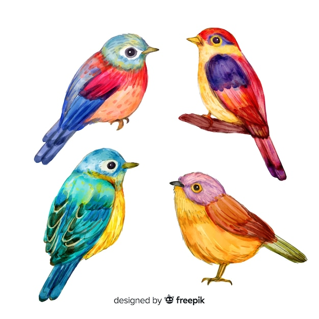 Collection of watercolor tropical birds Free Vector