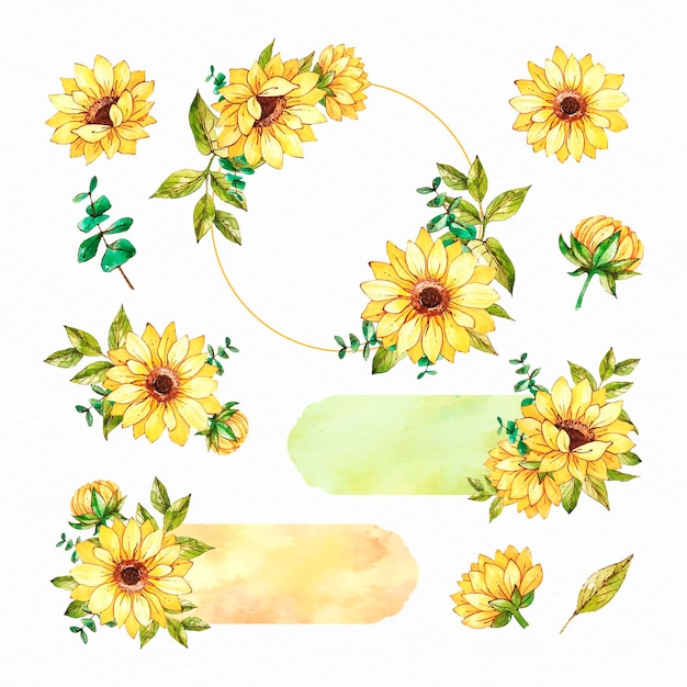 Collection of watercolour sunflower frame and scrapbook set Free Vector