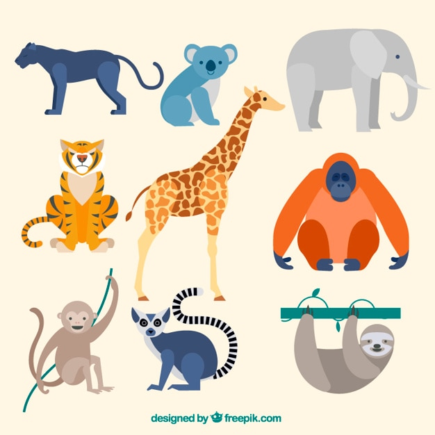 Collection of wild animal in flat design Free Vector