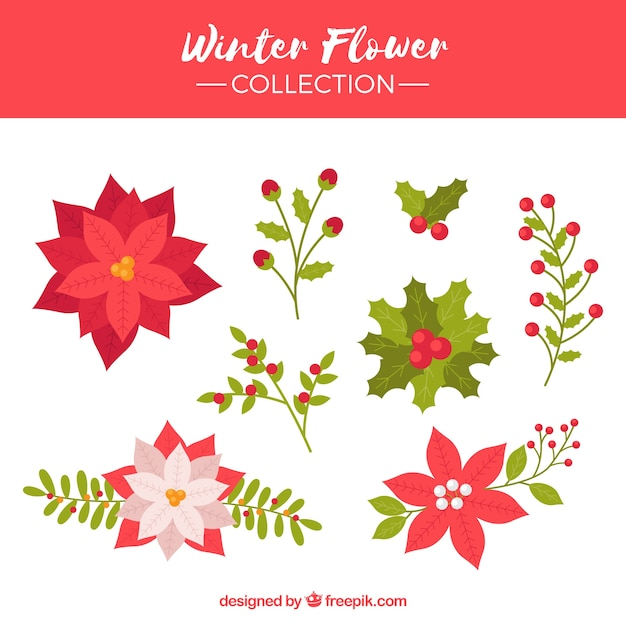 Collection of winter flower Free Vector