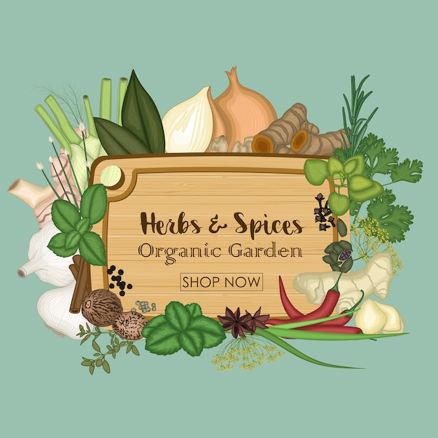 Collections of spice and herb with plank wooden tray Premium Vector