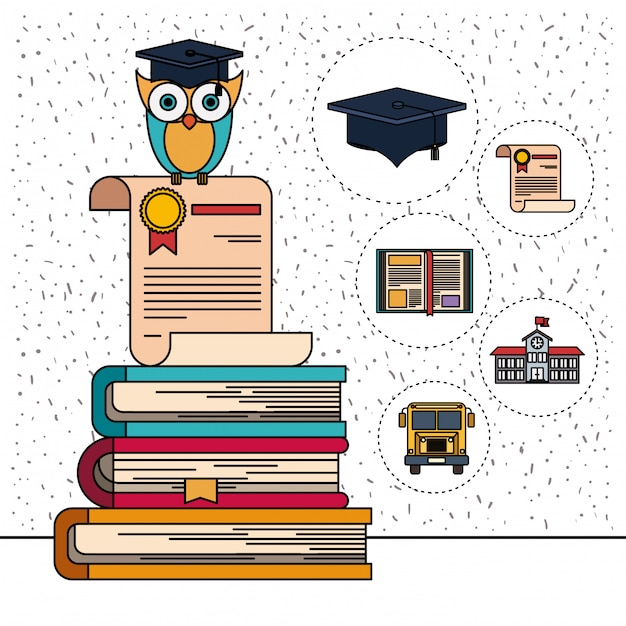 Color background with sparkles of owl on certificate and stack of books with education element icons Premium Vector