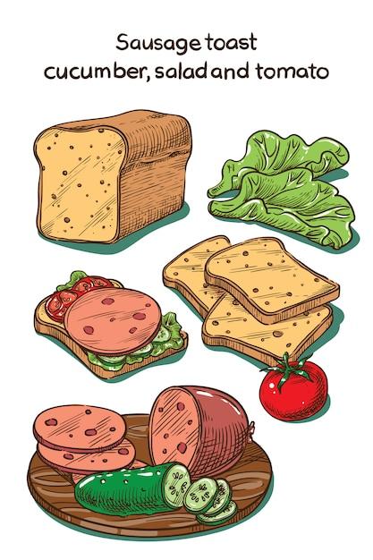 Цветной эскиз тост с колбасой, огурцом и помидором Premium векторы