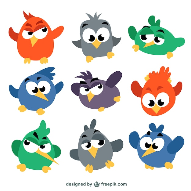 Colored birds in cartoon style
