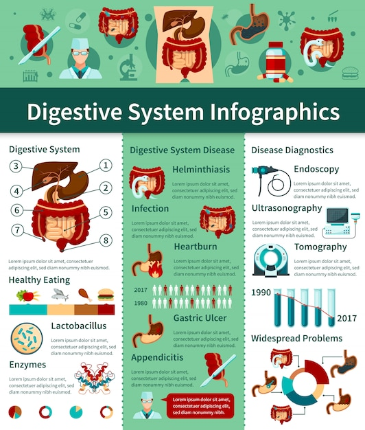 Colored digestive system flat infographics with different types of disease and diagnostics descriptions Free Vector