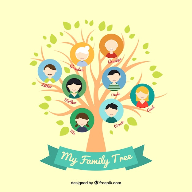colored family tree in flat design vector free download