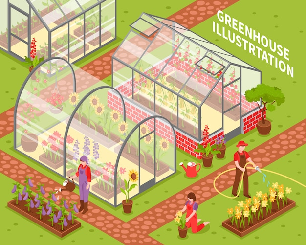 Colored greenhouse composition Free Vector