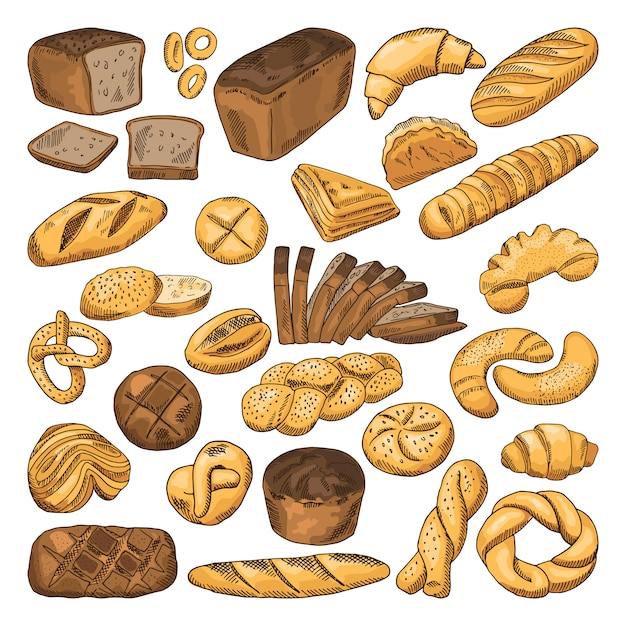 Colored hand drawn pictures of fresh bread and different types of bakery food Premium Vector