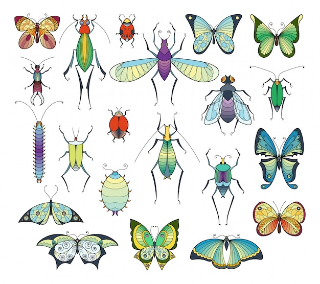 Colored insects isolate on white. bugs and butterflies vector pictures set. Premium Vector