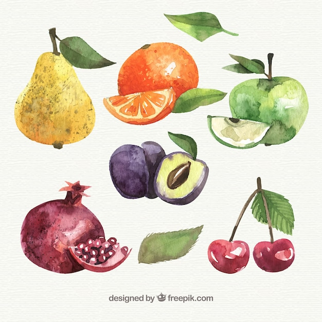 Colored pieces of fruit Free Vector