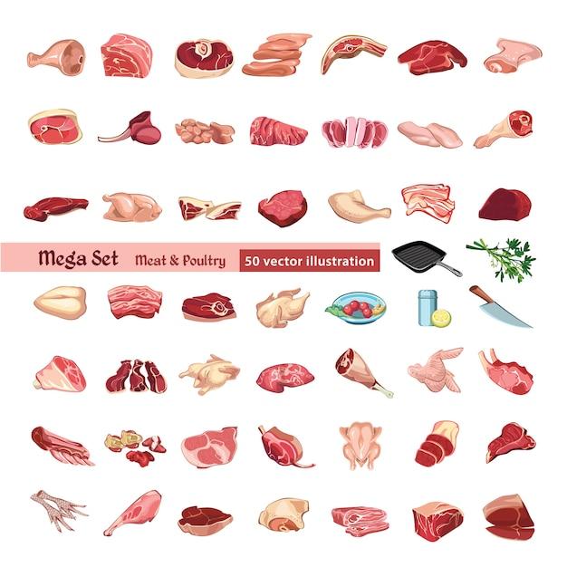 Набор цветных элементов мяса и птицы Бесплатные векторы
