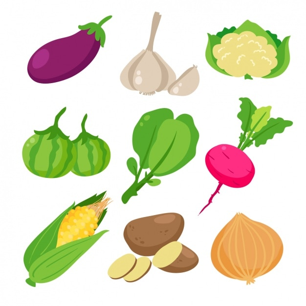 Colored vegetables collection Vector | Free Download